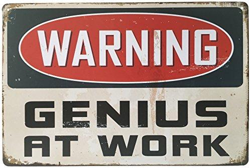 Warning Genius At Work Retro Vintage Tin Sign 12