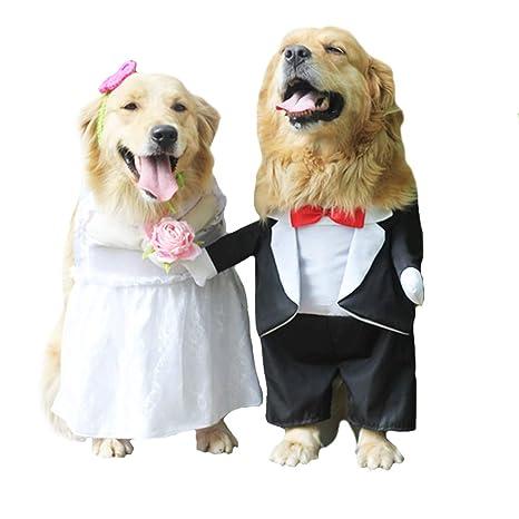 Vestido de Perro, diseño de Flores, Ideal para Bodas, para Perros ...