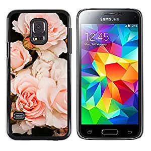 Exotic-Star ( Light Roses Composition Tree ) Fundas Cover Cubre Hard Case Cover para Samsung Galaxy S5 Mini / Samsung Galaxy S5 Mini Duos / SM-G800 !!!NOT S5 REGULAR!