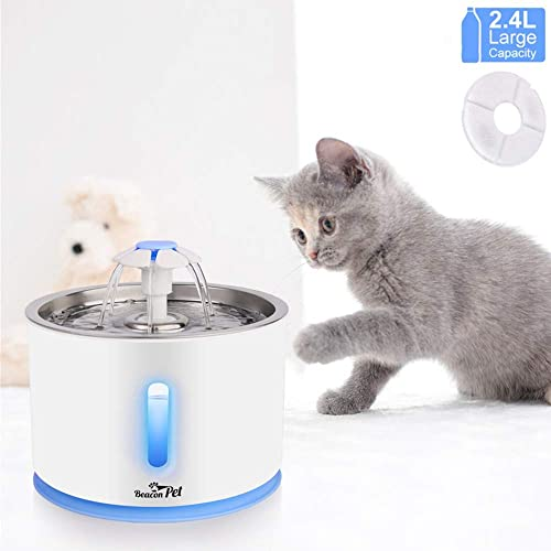Beacon Pet Water Fountain, 84oz 2.4L Automatic Cat Fountain Stainless Steel Dog Water Dispenser with Filter Led Lights for Cats, Dogs, Multiple Pets