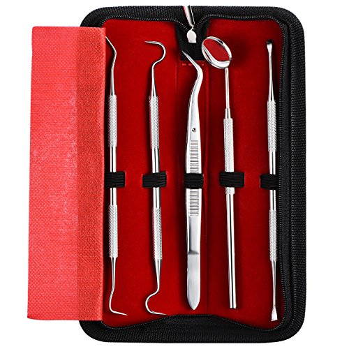 ElleSye Dental Hygiene Tool Set, Dental Tool Kit, 5-Piece, for Home Oral Care, Stainless Steel, Rust-free, Anti-fog Mouth Mirror, Tartar Remover, Dental Pick, Dental Scaler, Tweezers