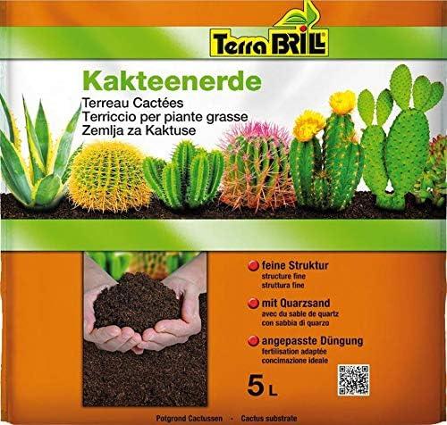 Terrabril Fertilizante de Suelo para Plantas suculentas, 5 litros ...