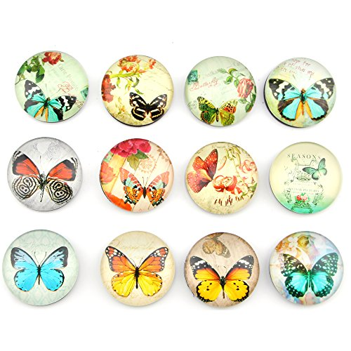 Refrigerator Magnet Set - 12 Pack Butterfly Pattern Fridge Magnets Set,Perfect Refrigerator Magnets,Office Magnets, Calendar Magnet, Whiteboard Magnets, 1.38 Diameter