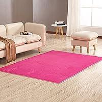 Soft Indoor Modern Anti-Skid Shaggy Rugs Fluffy Living Room Carpets Children Rugs Room Mat Home Decor 4 Feet by 5.3 Feet, Hot Pink