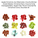 Aromatherapy Hosley 12 oz Assorted Shaped Wax Melts. Infused with essential oils. BULK BUY Ideal GIFT, Party favor, Weddings, Spa, Reiki, Meditation, Bathroom setting (Assorted)