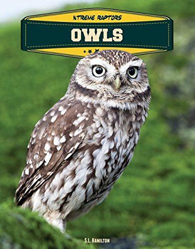 Owls (Xtreme Raptors)