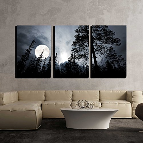 Full Moon in The Forest Wall Decor x3 Panels