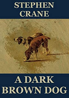 A Dark Brown Dog - Study Guide