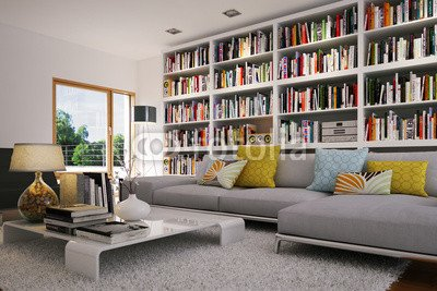 Salotto con divano e libreria - Book shelf in appartamento (60529884 ...