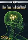 (DVD) How Does the Brain Work (Nova Science Now) Picture