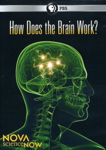 Nova Science Now: How Does the Brain Work by PBS