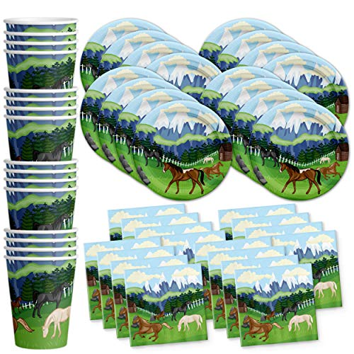 Wild Horses Birthday Party Supplies Set Plates Napkins Cups Tableware Kit for 16 by Birthday Galore -