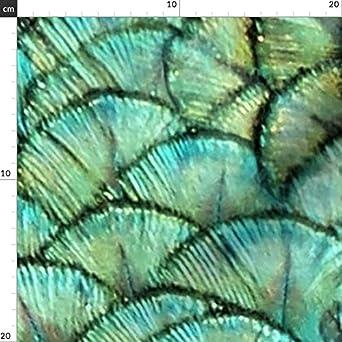 Pfau Aquamarin Stoffe Individuell Bedruckt von Spoonflower Bogenmuster Meerjungfrau Design von Peacoquettedesigns Gedruckt auf Baumwoll Popeline Smaragdgr/ün Feder