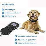Remote Controlled Dog Training Collar, 847 Yard