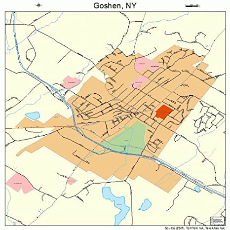 Map Of New York Towns.Amazon Com Large Street Road Map Of Goshen New York Ny Printed