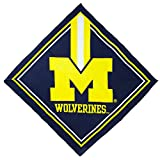 Best Wolverine Bandanas - NCAA Michigan Wolverines Fandana Bandana Review