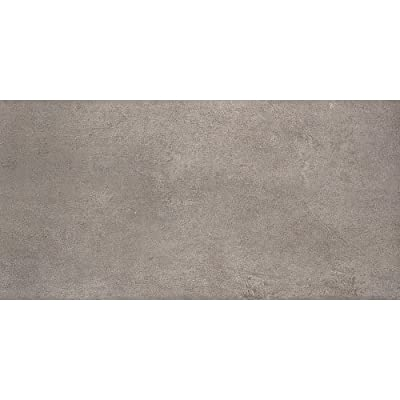 Samson 1020801 Genesis Loft Matte Floor and Wall Tile, 12X24-Inch, Mineral, 6-Pack