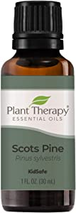 Plant Therapy Scots Pine Essential Oil 30 mL (1 oz) 100% Pure, Undiluted, Therapeutic Grade