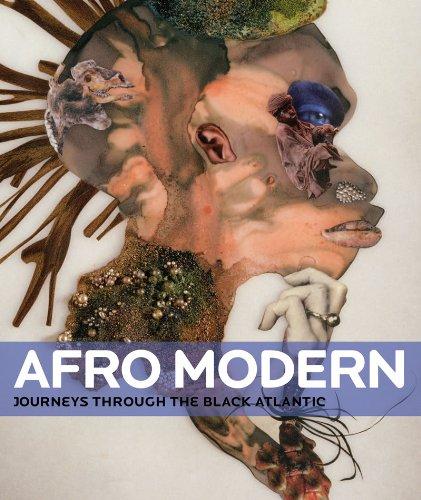 Afro-Modern: Journeys through the Black Atlantic ebook
