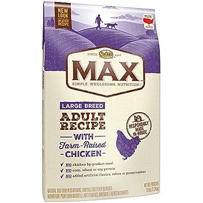 NUTRO MAX Adult Dry Dog Food, Regular & Large Breed, 25lb