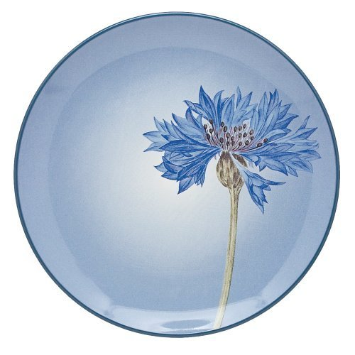 Noritake Colorwave Blue Accent Plate, 9-Inch by Noritake