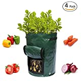 Blue Cascade 10 Gallon Garden Planting Grow Bags, 4 Pack Plant Tub with Flap and Handles Aeration Fabric Seedling Pots – Best Vegetable Planter Bag for Growing Potato, Carrot, Tomato & Onion For Sale