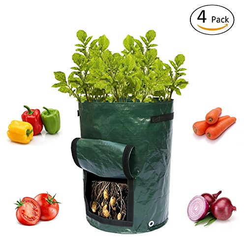 Blue Cascade 10 Gallon Garden Planting Grow Bags, 4 Pack Plant Tub with Flap and Handles Aeration Fabric Seedling Pots – Best Vegetable Planter Bag for Growing Potato, Carrot, Tomato (Best Tomato Plants)