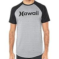 Camiseta Hurley Especial Hawaii Cinza preta 0eb30686910