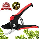 Butterfly Love Garden Pruning Shears, 8