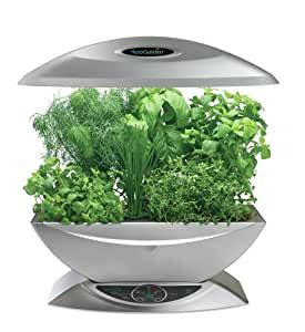 AeroGarden 900330-1200 6 with Gourmet Herb Seed Kit, Silver