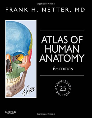 Atlas of Human Anatomy, Professional Edition: including NetterReference.com Access with Full Downloadable Image Bank, 6e (Netter Basic Science) by imusti