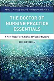 the doctor of nursing practice essentials mary zaccagnini