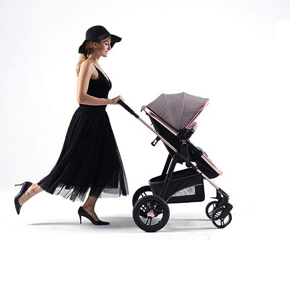 Amazon.com: DLJFU - Cochecito de bebé 2 en 1 Cochecito de ...