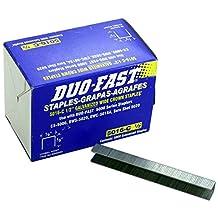 Duo Fast 5016C 20 Gauge Staples