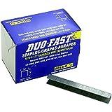 "Duo-Fast 5016C 1/2"" Length x 1/2"" Crown 20 Gauge Staples 5000 per Pack (5223)"
