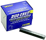 Duo-Fast 5016C 1/2'' Length x 1/2'' Crown 20 Gauge Staples 5000 per Pack (5223)