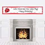 Modern Ladybug - Birthday Party Decorations Party Banner