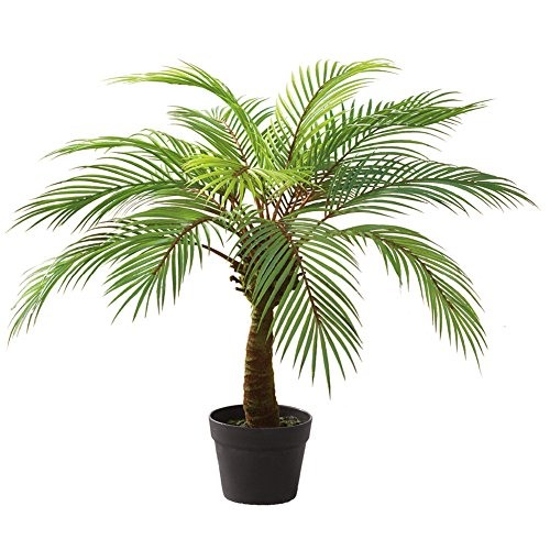Realistic Artificial Palm Tree In Planter Pot - Palm Pots