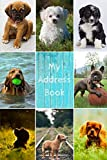 My Address Book: Dog Cover | Address Book for