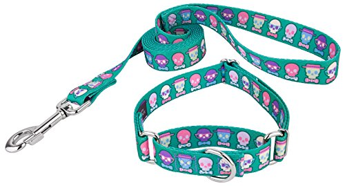 Country Brook Petz | Dapper Skulls Martingale Dog