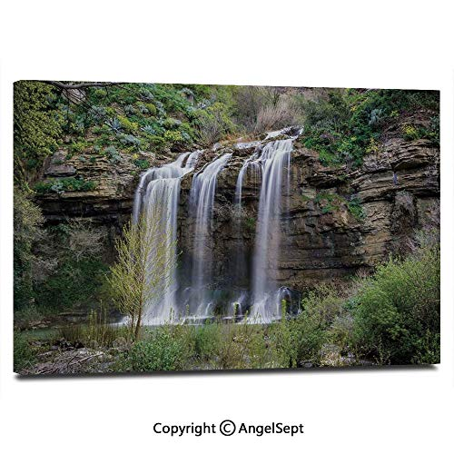 Modern Salon Theme Mural Photo of Waterfall Forest Jungle Corleone Sicily Rocks Trees Grass Landscape Painting Canvas Wall Art for Home Decor 24x36inches, Brown Green White