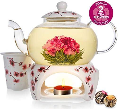 Teabloom Cherry Blossom Teapot Flowering