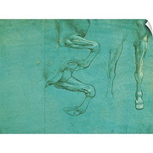 - CANVAS ON DEMAND Leonardo da Vinci Wall Peel Wall Art Print Entitled Drawing of Horse Front Legs, by Leonardo da Vinci, 1490. Royal Library, Turin, Italy 16