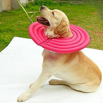 Tofern Collar isabelino de protección para perros, gatos, mascotas, de nailon, espuma de polietileno expandido, suave: Amazon.es: Productos para mascotas