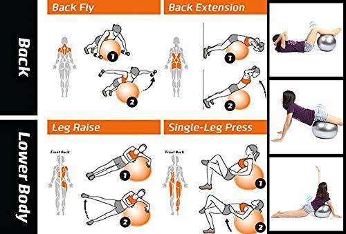 Exercise Heavy Duty Gym Ball India 2020   Non-Slip Stability Ball 1