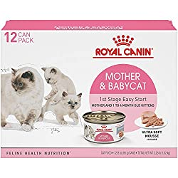 With so many cat and kitten food options out there focused on ingredients, how do you know what's best? Royal Canin knows there's a science to it—researching each pet's unique nutritional needs to formulate the most precise combination of nutrients i...