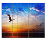 "Bird Prey Brahminy Kite Flying Beautiful Horizontal Tile Mural Satin Finish 42""Hx48""W 6 Inch Tile"