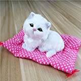Toonol 2017 Vivid Simulation Plush Seat Cat Toy with Sound Kids Toy Birthday Gift Doll Decorations Stuffed Toys Kidstime, Color White