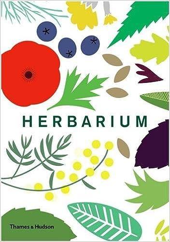 Herbarium Caz Hildebrand 9780500518939 Amazoncom Books