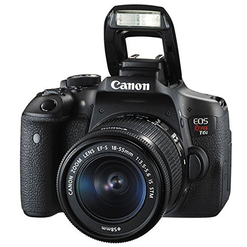 Canon EOS Rebel T6i DSLR Camera + EF-S 18-55mm is STM Lens & EF-S 55-250mm is STM Lens + Wide Angle & 58mm 2X Lens + Vivitar DC59 Gadget Bag + Wireless Remote + Slave Flash + Tripod - Deluxe Bundle